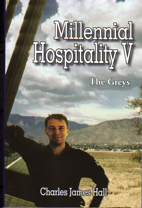 Millennial Hospitality V - The Greys Book Cover